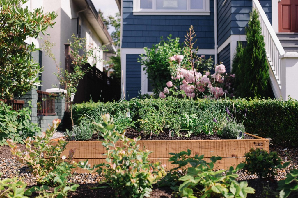 Projects | Victory Gardens