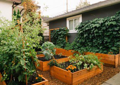 Fraser & 33rd Backyard Garden