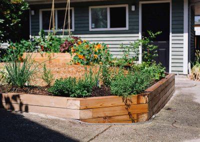 Strathcona Veggie, Herb & Berry Garden
