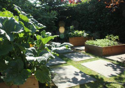 Wallace St. Garden